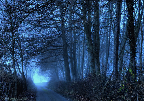 uk blue trees winter england colour nature landscape nikon scenery december northamptonshire countrylane 2012 twighlight hedgerows grangeroad tonemapped d80 geddington geddingtongrange