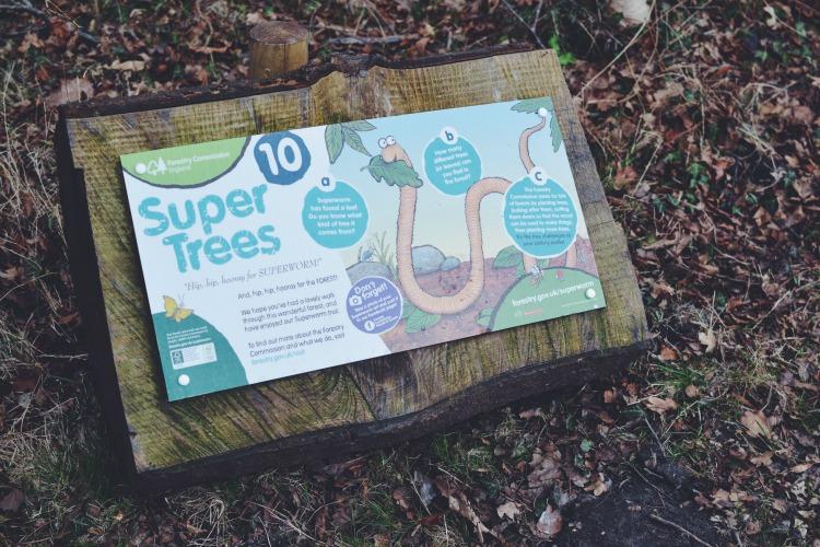 superworm super trees