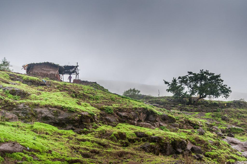 BrahmagiriTrekTrimbakeshwar_37