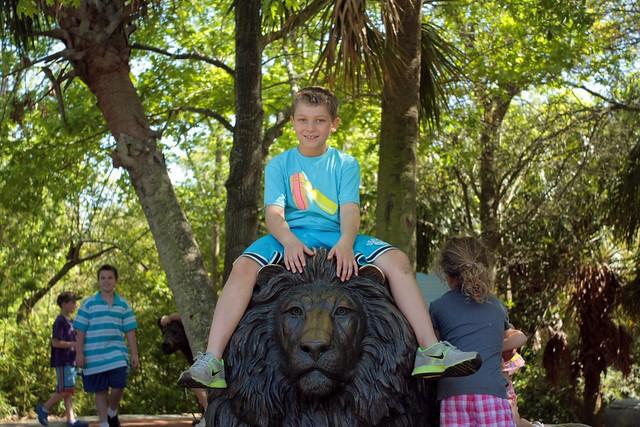 alex on the lion