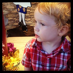 The moments when he stops to watch and listen are some of my favorites...