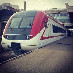 airline(0.0), bullet train(0.0), aviation(0.0), passenger(0.0), maglev(0.0), tgv(1.0), high-speed rail(1.0), vehicle(1.0), train(1.0), transport(1.0), rail transport(1.0), public transport(1.0), rolling stock(1.0), land vehicle(1.0),