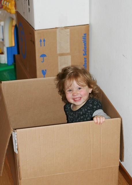 05-13-13 01 noe box