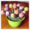 Isn't my cake pop bouquet cute? (cake pops were made by a co-worker, I simply arranged them)