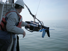 Fish acoustic tow body deployment