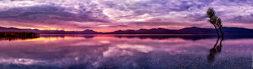 red sky panorama orange lake reflection tree public water grass yellow clouds canon dawn published purple canonef50mmf14usm canoneos6d ayearofpictures2013