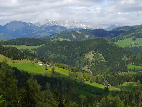 mountains meadows wiesen berge forests steiermark styria veitsch wälder bründlweg pogusch mürzstegeralpen rauschkogel