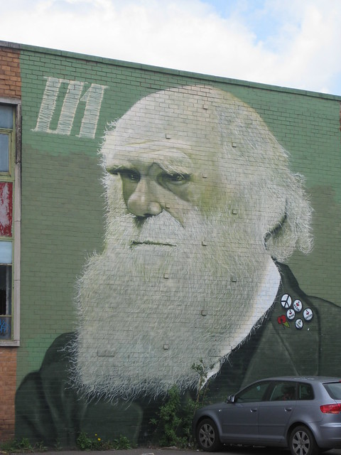 Street Art 1 Charles Darwin, Sheffield, UK