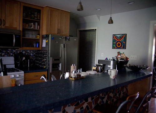 Danielle And Casey S Eco Modern Rowhouse Part 2 Diy Del Ray