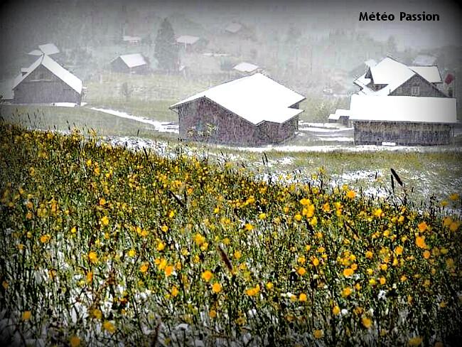 chutes de neige dès 400 m d'altitude dans les Vosges et le Jura fin mai 1983 météopassion