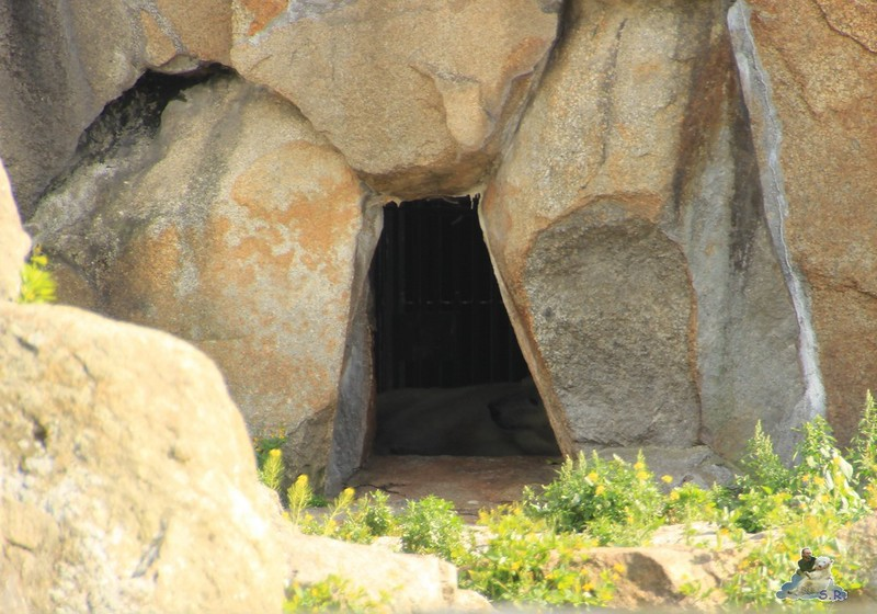 bleiben lieber in der Höhle :-)