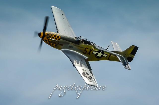 "HFC's P-51D Mustang ""Upupa Epops"""
