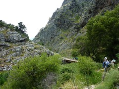 Descente depuis Musuleu vers le Francioni : arrivée à la passerelle du Francioni