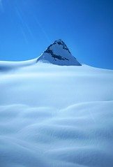 Mountain Palmer 4