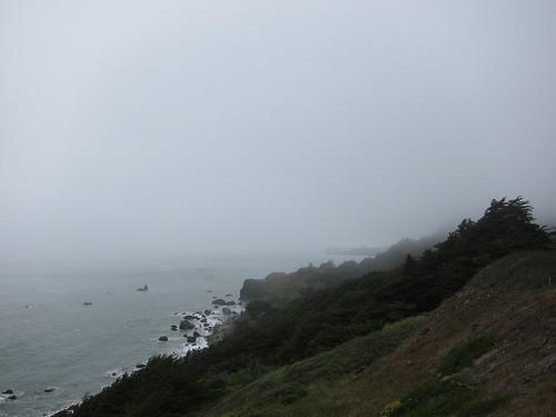 Muir Woods, Coastal Redwoods, green, recycl… IMG_4998