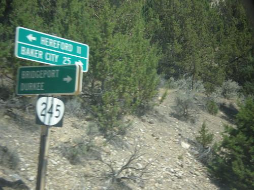 sign oregon intersection shield biggreensign distancemarker bakercounty or245 dooleymountainhighway