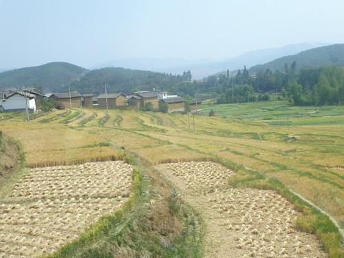 Yunnan13-Dali-Lijiang-Route (122)