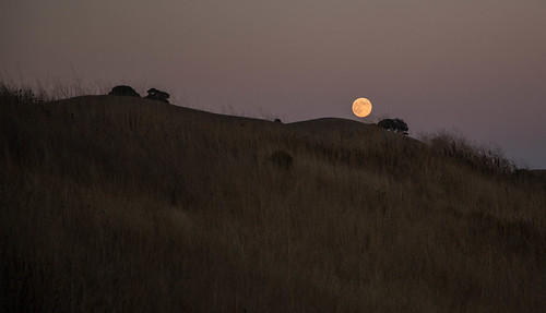 August 2013 Full Moon - Moonrise by mrsjpvan2