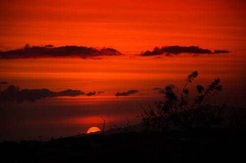 sunset costa sol nature beautiful silhouette landscape atardecer rojo nikon rica silueta d7000 nikonflickraward
