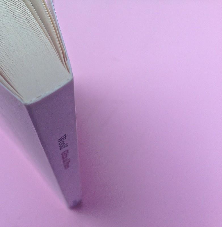 Virgina Woolf, Gita al Faro. Einaudi 2014. Progetto grafico di 46xy. Taglio superiore, quarta di copertina, dorso  (part.), 1