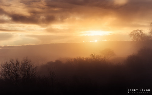 morning trees england mist clouds sunrise golden unitedkingdom sony wallingford goldenhour wittenhamclumps southoxfordshire a99 sonyalpha andyhough earthtrust slta99v andyhoughphotography tamronsp70200di