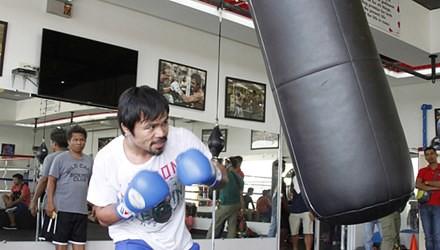 Manny Pacquiao tích cực chuẩn bị cho trận so găng 250 triệu USD