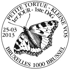 07bis zBxlFPapillon Petite tortue