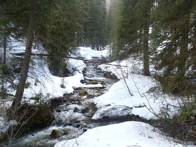 Welcome Creek