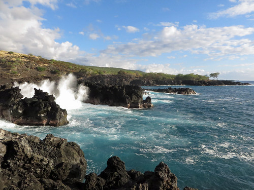 ocean trees sea sky seascape nature water ecology clouds outdoors island hawaii polynesia bay scenery surf waves pacific shoreline cliffs spray pacificocean coastal shore foam tropical coastline bigisland aquatic kona saltwater ecosystem kailuakona lavarock marineecology 2015 rockyshore konacoast hawaiicounty hawaiiisland keauhou marineecosystem westhawaii northkona kuamoobay barryfackler barronfackler