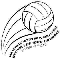 15 Volley zBXL F