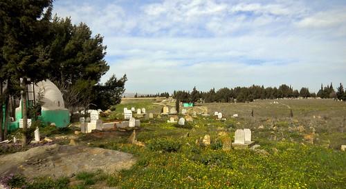 algérie mosquée cimetière tombes cimetières sétif sidiamar sidelkhier algérie2016