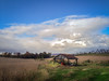 Bushey School Road  -Photographer's Paradise