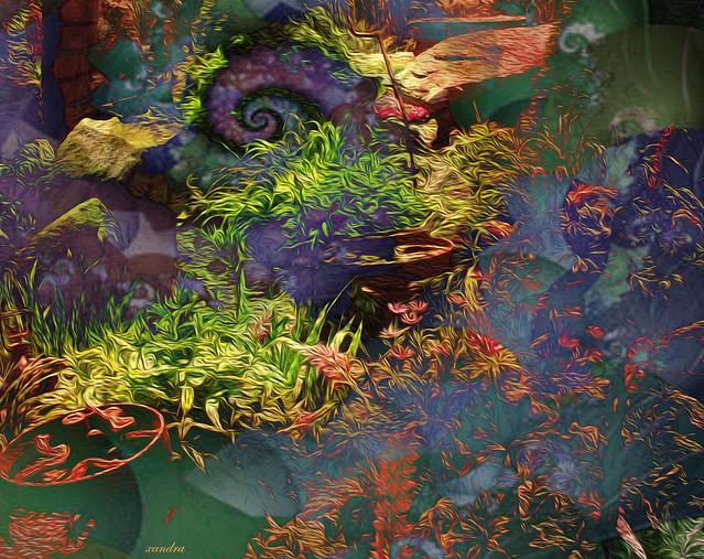 ..a fractal garden..