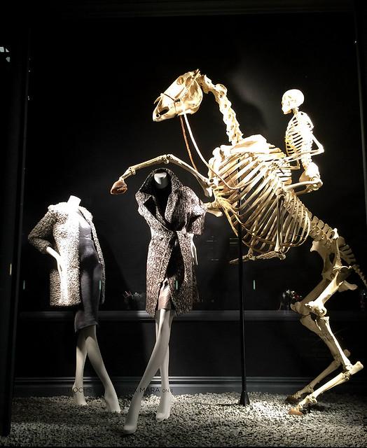 Bones 2 (alternate)