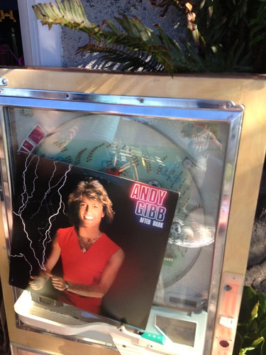 The lightning-thumbed Andy Gibb