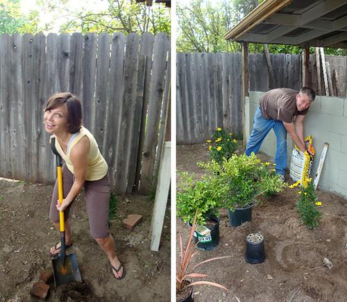 SG exterior gardening