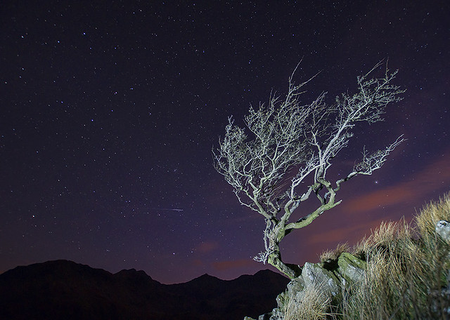 Photo:'The Ancients' - Nant Gwynant, Snowdonia By:Kristofer Williams