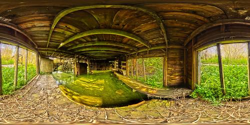 park nature mercer swamp wa algae slime bog slough bellevue equirectangular mercerslough