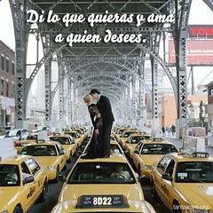di_lo_que_quieras