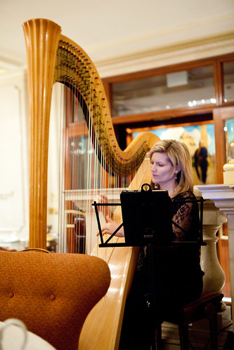 The lovely harpist