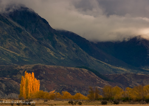 Autumn in New Zealand (Canterbury Region)