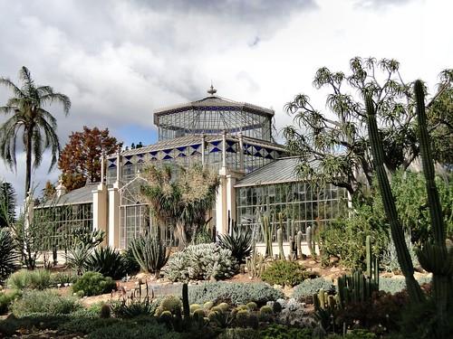 A Winemaker's Glass. Schomburgk's Palm House, Adelaide Botanic Garden, Adelaide, SA, Australia