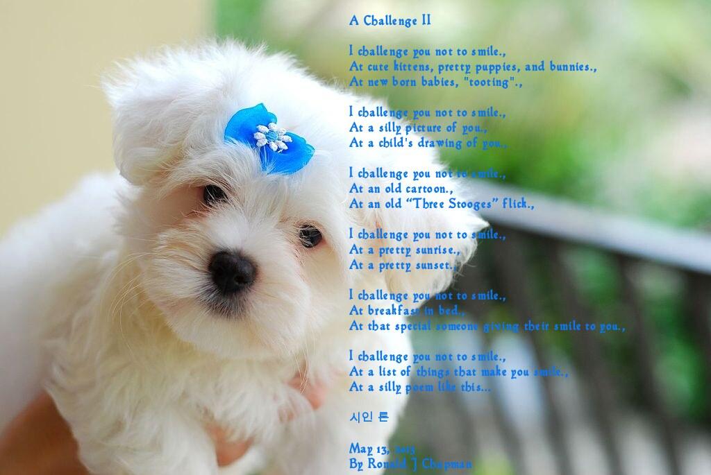 A Challenge II Poem