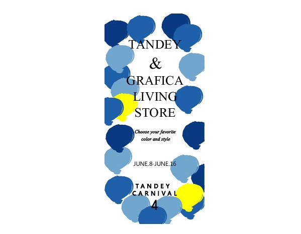 TANDEY CARNIVAL 2013 06ブログ.ai