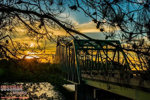 bridge sunset lake reflection nature water silhouette georgia gainesville lakelanier forsythcounty hallcounty brownsbridge thesussman sonyalphadslra550 sussmanimaging