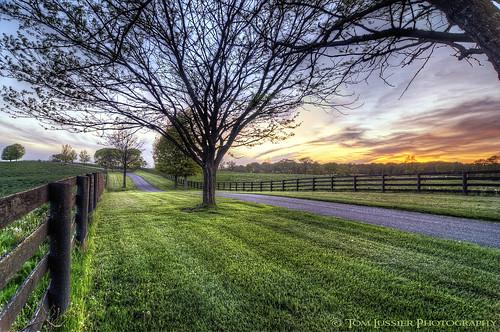 sunset usa tree clouds fence virginia shenandoah longbranch tomlussier landscapespec2013