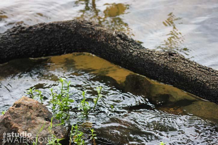 Texture - Water