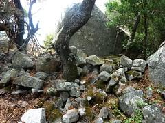 Alentours du site : murets et abris à l'Est