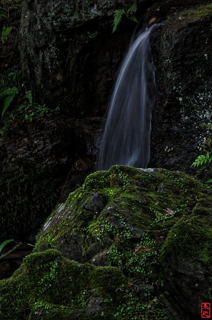 「流れ落つ」 醍醐寺 - 京都