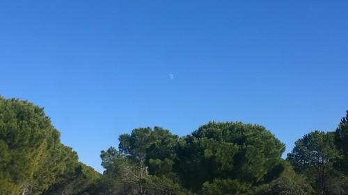 Luna de medio día.